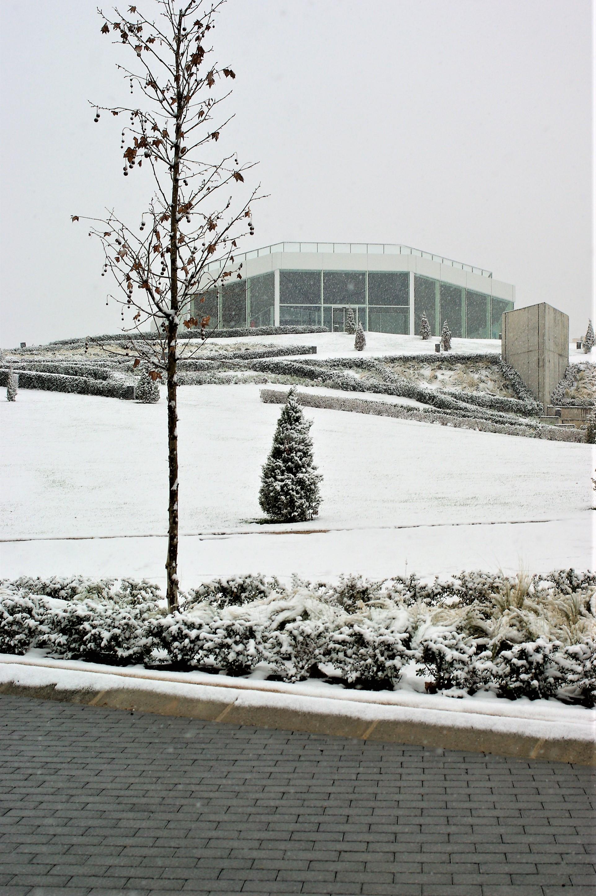 El parque Felipe VI, 9 de enero 2021, LIF 2002